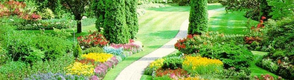 Prodotti per giardinaggio e orticoltura